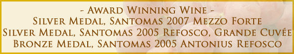 graphic-award3-winning-wine-santomas